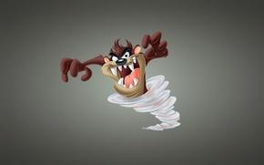 Картинка торнадо, вихрь, Taz, Тасманский дьявол, Looney Tunes, Tasmanian Devil, Луни Тюнз, Весёлые мелодии