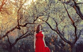 Картинка девушка, стиль, фон, платье, в красном