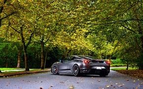 Картинка Ferrari, Green, Autumn, Tuning, asphalt, Silver, 430, Wheels, Trees, Leaf