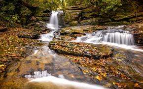 Картинка осень, листья, водопад, каскад, Georgia, Джорджия, Chattahoochee-Oconee National Forest, Национальный лес Чаттахучи-Окони, Raven Cliff Falls