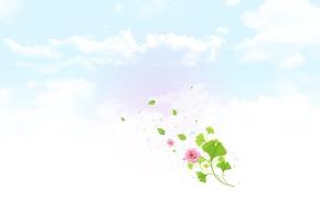 Картинка цветок, небо, облака