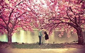 Картинка осень, деревья, любовь, природа, девушки, настроение, романтика, красота, поцелуй, дружба, парни, отношения, ностальгия, теплота, поцелуи