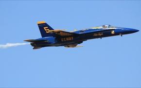Картинка USA, sky, wallpapers, air, five, Blue Angels