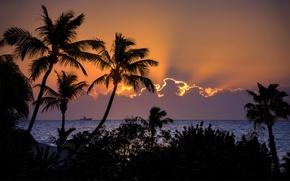 Картинка море, небо, облака, закат, корабль, палмы