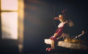 Обои игрушка, Pinocchio, фон
