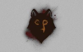 Картинка взгляд, фон, голова, Волк