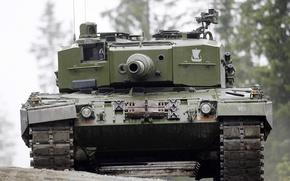 Картинка танк, ствол, боевой, бронетехника, Leopard 2 A4