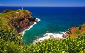 Картинка море, небо, трава, маяк, горизонт, hawaii, мыс, растения_