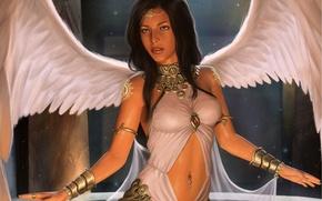 Обои ангел, поза, девушка. взгляд. крылья, арт, angel