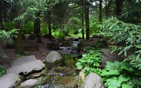 Картинка пейзаж, ландшафт, сад, японский