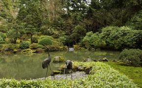 Картинка зелень, деревья, пруд, камни, мох, сад, США, кусты, Oregon, Portland, Japanese Gardens