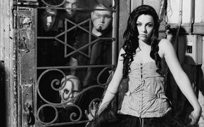 Картинка Fallen, Amy Lee, Evanescence