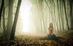 Картинка осень, лес, девушка, туман