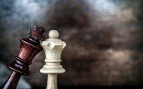 Картинка love, game, macro, chess, queen, king