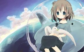 Картинка море, дельфин, птица, аниме, арт, девочка