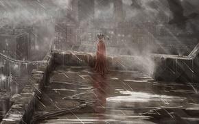 Картинка девочка, птицы, мрак, крыша, дождь