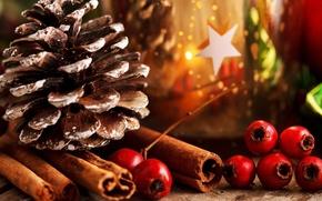 Картинка листья, ягоды, праздник, палочки, Новый Год, Рождество, красные, декорации, корица, шишка, Christmas, New Year, падуб