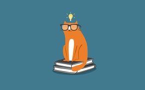 Картинка кошка, кот, лампочка, книги, минимализм, очки, cat, учебники
