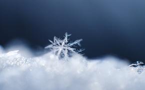 Картинка кристалл, макро, снег, узор, снежинка