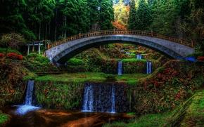 Картинка деревья, цветы, мост, парк, водопад, вечер, каскад