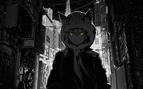 Картинка девушка, снег, город, темнота, улица, капюшон, переулок, arsenixc