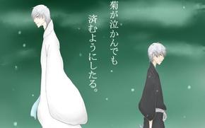 Картинка Bleach, блич, Гин Ичимару