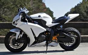 Картинка белый, небо, деревья, мотоцикл, white, honda, хонда, cbr1000rr