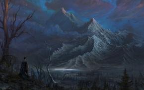 Картинка лес, горы, дерево, рыцарь