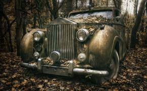 Картинка машина, лес, Rolls Royce
