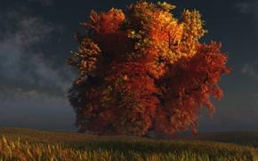 Картинка осень, трава, дерево, digital, red and gold