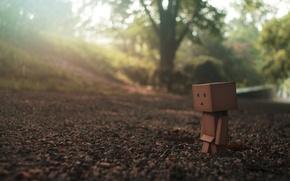 Обои макро, земля, взгляд, danbo, один, дорога, грусть