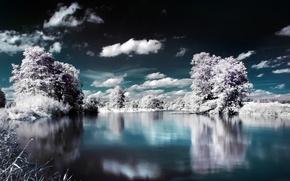 Картинка вода, облака, снег, деревья
