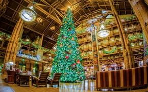 Картинка дизайн, огни, праздник, елка, интерьер, Калифорния, Новый год, США, Диснейленд, гирлянды, новогодняя, ласпы, зал.свод