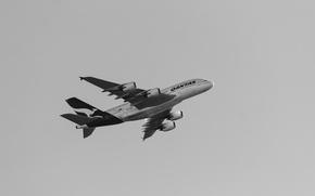 Обои самолет, Qantas, полет, A380