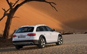 Обои Allroad, белый, пустыня, Audi