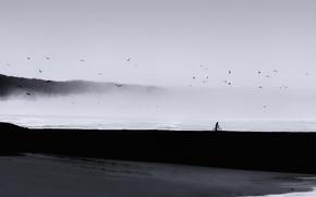 Картинка минимализм, море, человек, птицы, туман, пейзаж