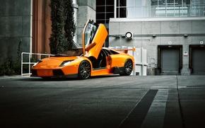 Картинка здание, оранжевая, Lamborghini, ламборджини, Murcielago, front, orange, ламборгини, открытая дверь, мурселаго