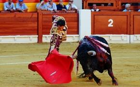 Картинка Spain, Bull, Matador