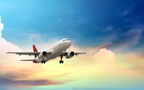 Обои пассажирский, высота, самолет, небо, авиалайнер, летит, облака