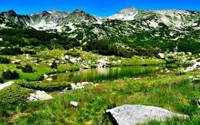 Картинка небо, трава, деревья, пейзаж, цветы, горы, природа, озеро, камни, скалы, grass, sky, trees, landscape, nature, …