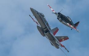 Картинка полет, истребители, Hornet, CF-18, Morko-Morane