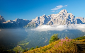 Обои небо, трава, облака, цветы, горы, скалы, высота, тропа, долина, Альпы, Италия, солнечно, возвышенность, Доломиты