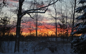 Картинка снег, восход, Зима, winter, snow, sunrise, december, Декабрь