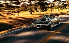 Картинка Corvette, Chevrolet, black, Stingray, Nick Stephens Photography