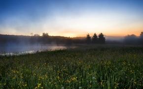 Картинка поле, пейзаж, туман, река, утро