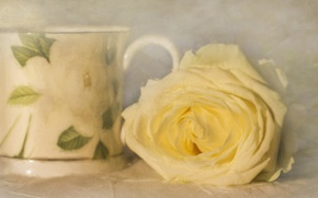 Картинка роза, текстура, бутон, арт, жёлтая роза