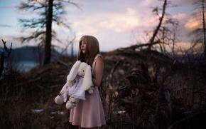 Картинка лес, девушка, игрушка, платье, Lichon