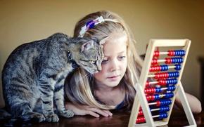 Картинка кошка, кот, девочка, друзья, счёты