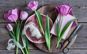 Картинка Pink, тюльпаны, ножницы