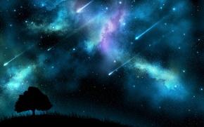 Картинка космос, ночь, дерево, Обои